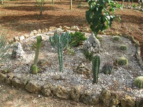 pietre per giardino roccioso come decorare il giardino con i sassi foto nanopress donna