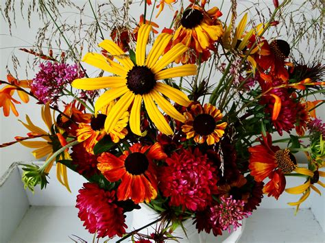 autumn flower wallpapers images  pictures backgrounds