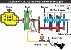 How Manual Car Gears Work  U00bb Learn Driving Tips