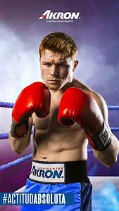 Information About Canelo Wallpaper Yousenseinfo