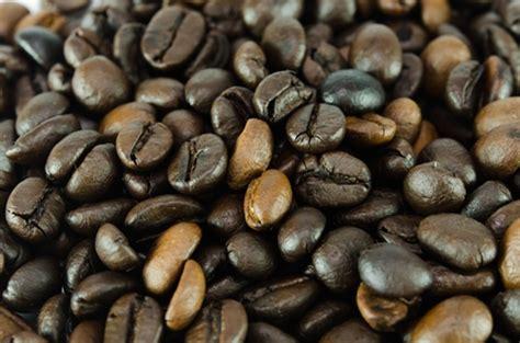 light roast more caffeine light vs roast which bean packs more caffeine mr