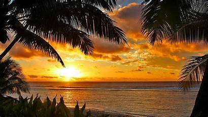 Beach Tropical Sunset Desktop Backgrounds Computer Background