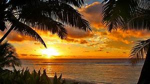Tropical Sunset Wallpaper and Background Image | 1366x768 ...