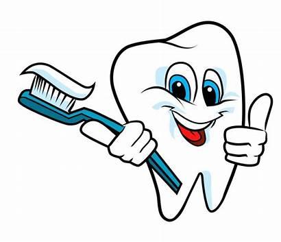 Tooth Clipart Teeth Clip Brushing Brush Dental