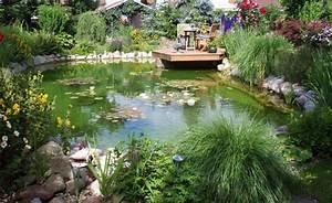 Gewächshaus Bepflanzen Plan : 48 besten saatgut bilder auf pinterest pflanzen ernte ~ Lizthompson.info Haus und Dekorationen