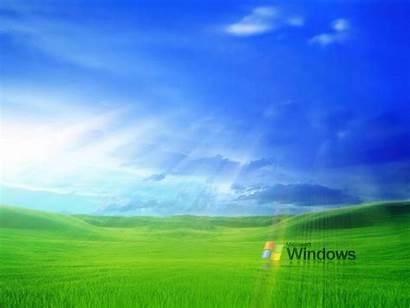 Windows Xp Wallpapers Grass Desktop Backgrounds Keywords