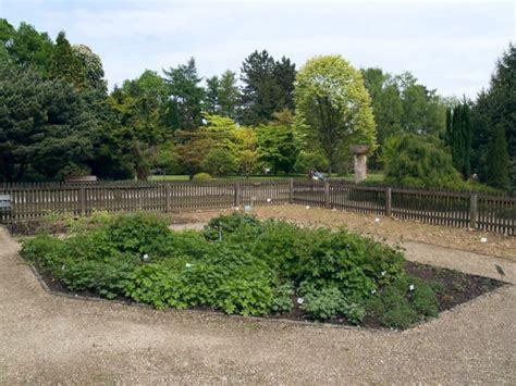 Freunde Und Förderer Des Botanischen Gartens Rombergpark E