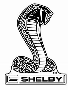 Shelby Car Logo and Brand Information