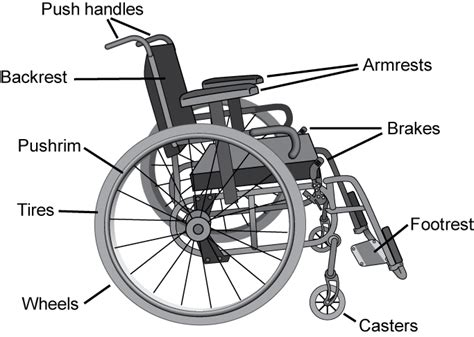 What The Spinal Cord Injury