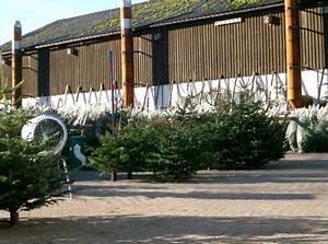 Weihnachtsbaum Wasser Geben : pflege ~ Bigdaddyawards.com Haus und Dekorationen