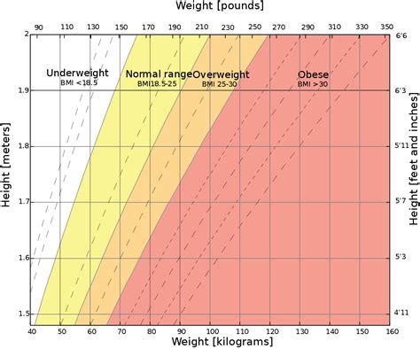 Body Mass Index Quetelet Index