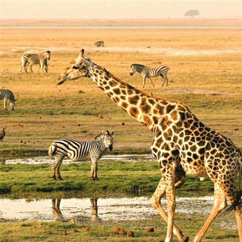 BUBO cestovanie: Juh afrického kontinentu. by .týždeň ...