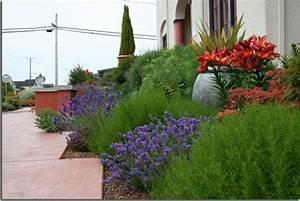 Aktuelle Blumen Im April : mediterraner garten m rchenhafte atmosph re schaffen ~ Markanthonyermac.com Haus und Dekorationen