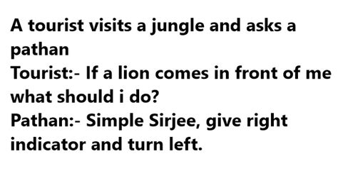 funny tourist jokesquotesone linersstories pictures