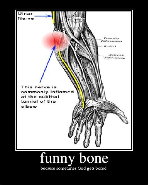 Funny Bone I Wonder Don T You Outside Perception