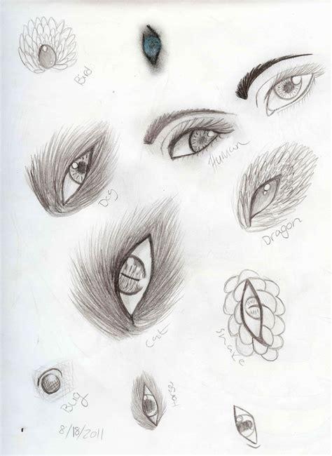 animal eye sketch dump  xxdeadkenalaxx  deviantart