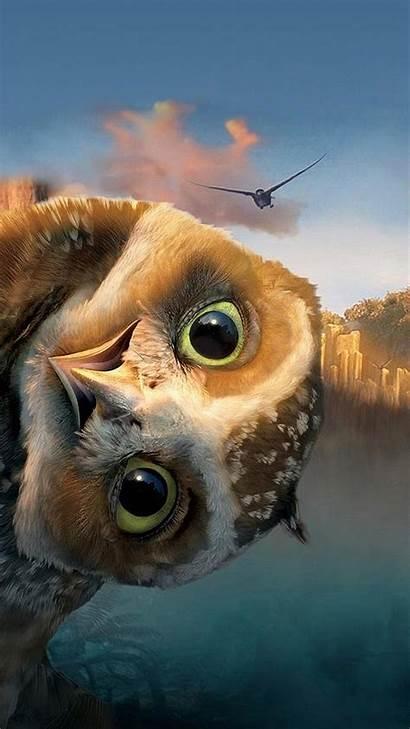 Comedy Owl Funny