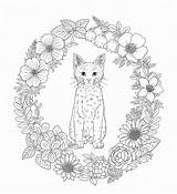 Coloring Whisker Haven Pages Nature Adult Pg Harmony Adults Sheets Printables sketch template