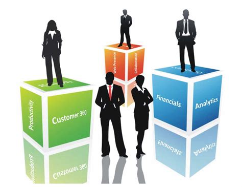 important functions   typical business enterprise