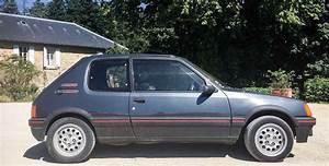 Peugeot 205 Gti 1 6l
