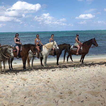cayman riding horse grand bay west horseback islands tripadvisor tours