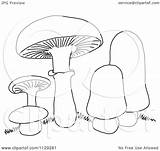 Mushrooms Cartoon Clipart Coloring Outlined Vector Picsburg Clipartof Without Royalty Protected Law Copyright sketch template