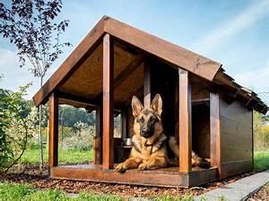 Cabane Pour Chien : plan niche chien 10 niches pour chien construire soi m me ~ Melissatoandfro.com Idées de Décoration