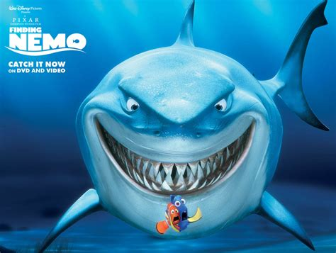 7 Disney Pixar Animal Bruce From Finding Nemo Cartoon