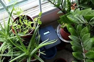 Pflanzen Im Urlaub Bewässern : hydra kleiner helfer f r die heimischen pflanzen ~ Markanthonyermac.com Haus und Dekorationen