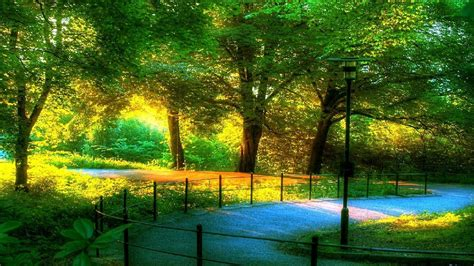 beautiful lovely scenery wallpapers driverlayer search
