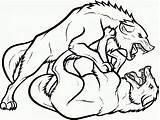 Wolf Coloring Wolves Printable Desenhos Lobos Lobo Animal Fighting Colorir Alpha Sheets Desenho Adults Drawing Animals Imagem Imprimir Desenhar Um sketch template