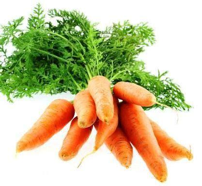 cuisiner quinoa cuisiner les fanes de carottes de de radis de navets