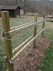 Rhizomsperre Selber Bauen : raspberry cane support farm ~ Lizthompson.info Haus und Dekorationen