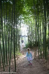Melbourne: The Ian Potter Foundation Children's Garden ...