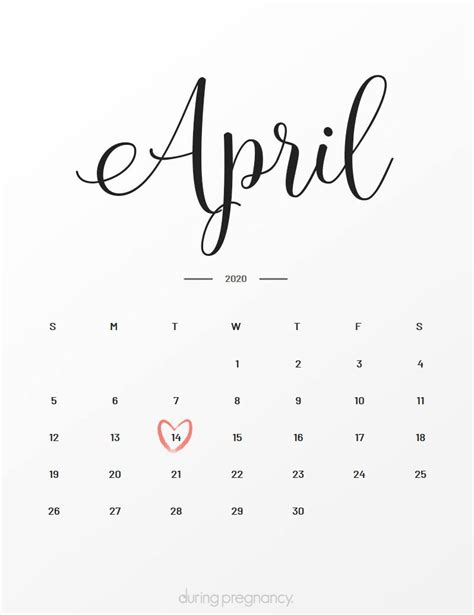 Due Date: April 14 2020 During Pregnancy