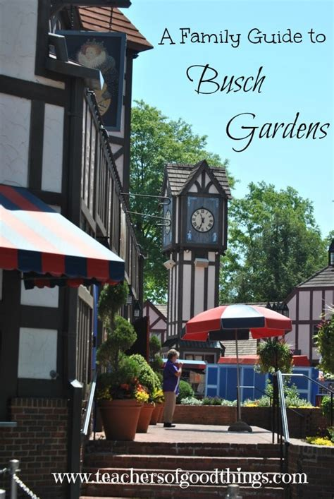 A Family Guide To Busch Gardens  Joy In The Home