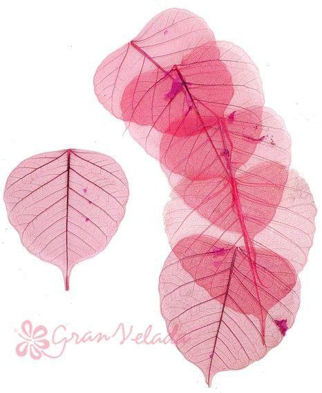 esqueletos de hojas grandes rojos sirven para decorar velas proyectos que debo intentar