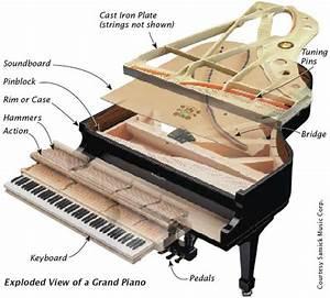labelled diagram grand piano - Google Search Piano
