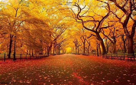 christian autumn wallpaper  images