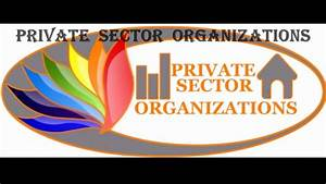 private sector organization - YouTube