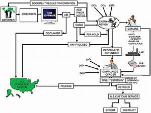 Appendix E The U S Food And Drug Administration And