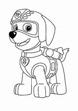 Paw Patrol Zuma Coloring Pages Printable Sheets Colouring Coloring1 Books sketch template