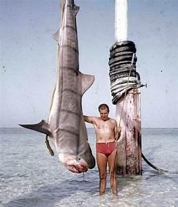 Future War Stories  Fws Armory  Underwater Firearms By Yoel