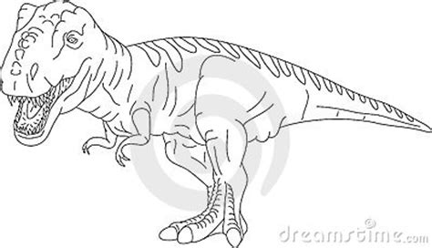 rex royalty  stock images image