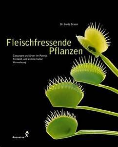Fleischfressende Pflanzen Kaufen : fleischfressende pflanzen ~ Michelbontemps.com Haus und Dekorationen