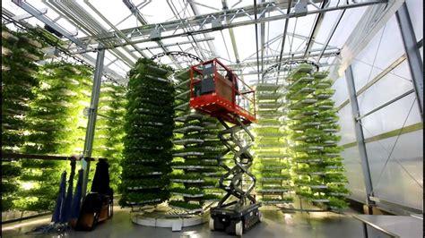 indoor vertical garden the future of farming