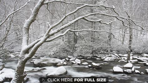 Page 11 Of Winter Wallpapers, Photos And Desktop Backgrounds