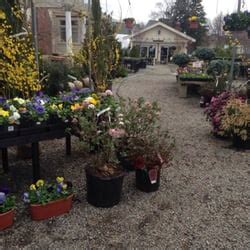needham garden center hillcrest gardens garden centres 888 great plain ave