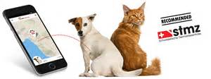 gps tracker for cats petpointer gps tracker sat nav tracking cats dogs
