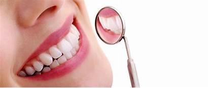 Dental Hygiene Cosmetic Dentist Oral Dentistry Cleaning